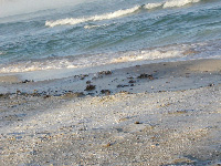 замёрзшие волны и песок